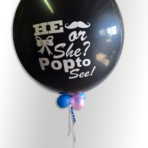 gender reveal ballon zwolle